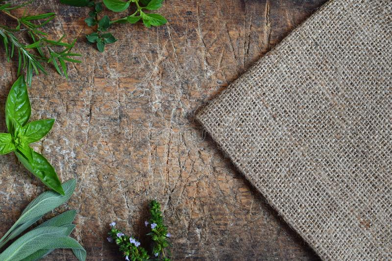 Ervas picantes e medicinais frescas no fundo de madeira Beira da vária erva - alecrim, oréganos, sábio, manjerona, manjericão, to imagem de stock