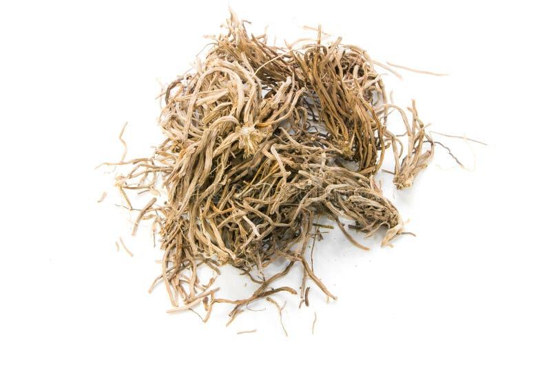 Ervas secadas, zizanioides de Vetiveria (L ) Pequeno ex de Nash imagem de stock
