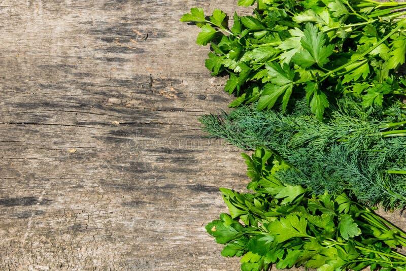 Ervas verdes frescas do aneto e da salsa na tabela de madeira rústica foto de stock