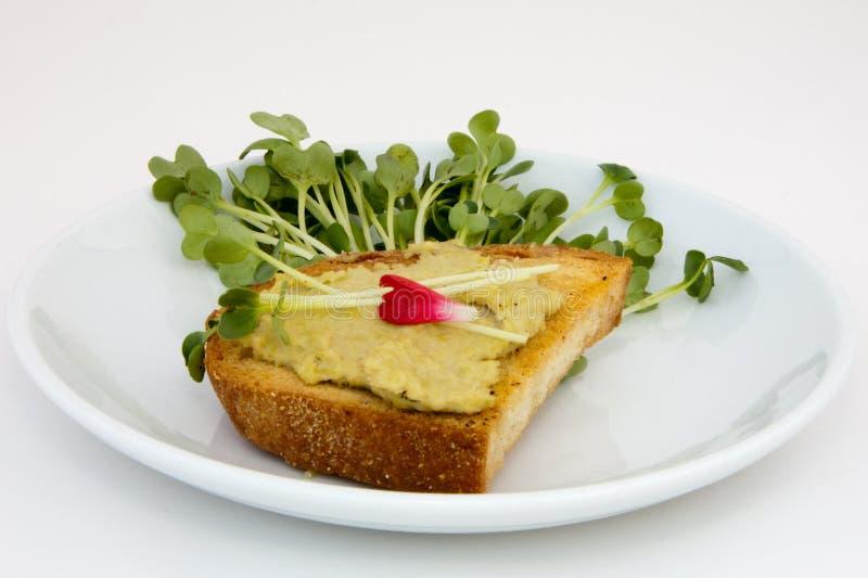 A ervilha fresca Hummus Crostini com Tendril da ervilha decora foto de stock