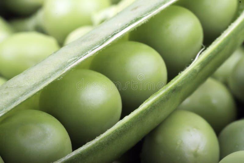 Ervilha verde fotografia de stock royalty free