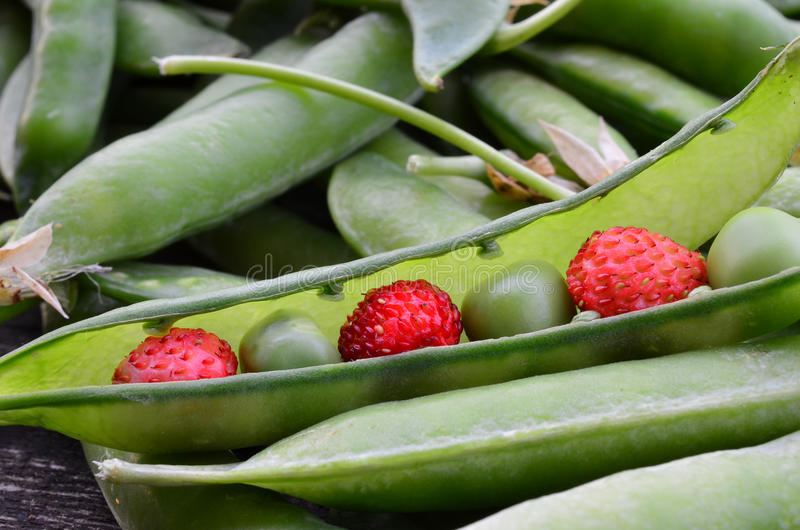Ervilhas e morangos silvestres imagens de stock royalty free
