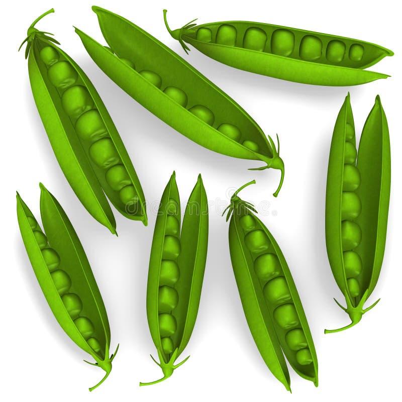 Ervilhas vegatable ilustração royalty free