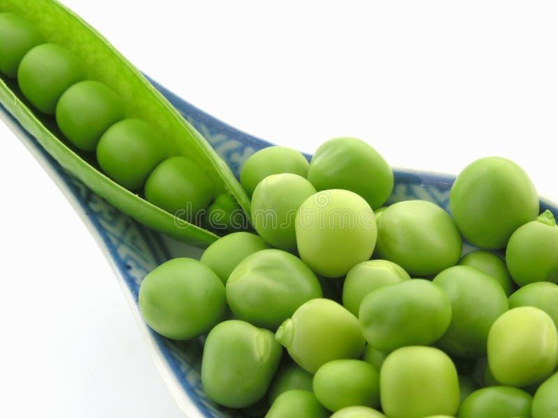 Ervilhas verdes fotografia de stock