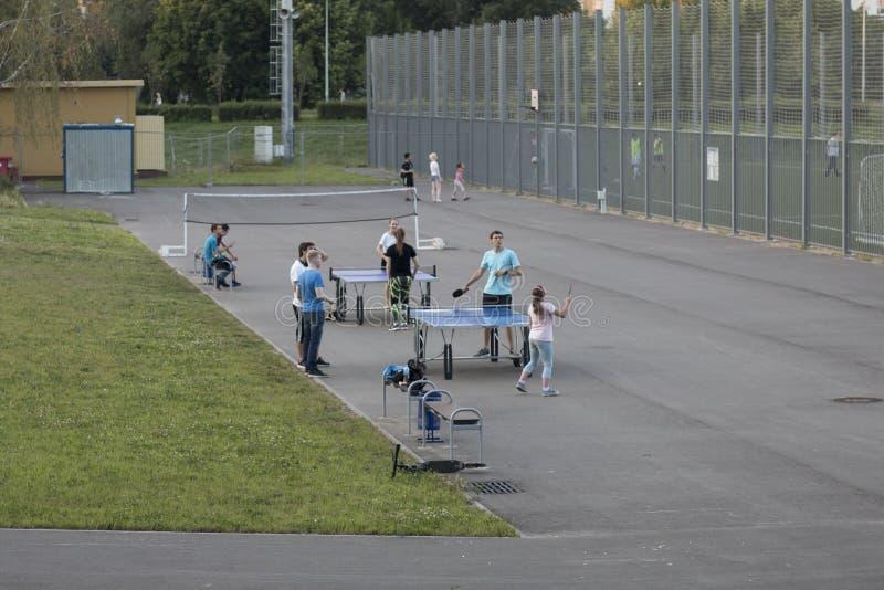 Erwachsene und Kinder, die auf dem Sportplatz im Park am Sommerabend spielen lizenzfreie stockfotos