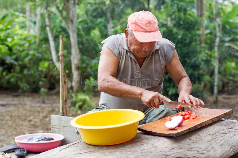Erwachsener Mann, der das Mittagessen vorbereitet lizenzfreies stockbild