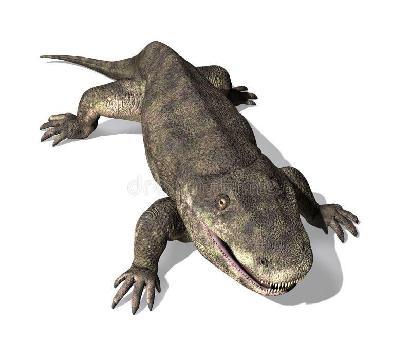 Eryops - Prehistoric Amphibian 2. The Eryops was a prehistoric amphibian that lived during the early Permian Period stock illustration