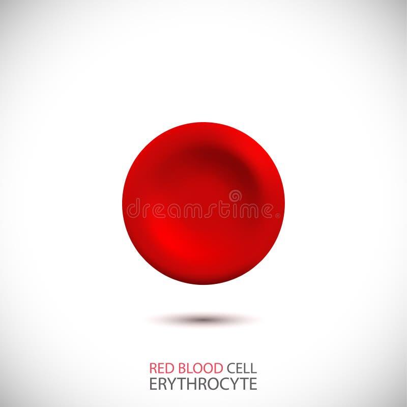 erytrociet Rode bloedcel Vector illustratie royalty-vrije illustratie