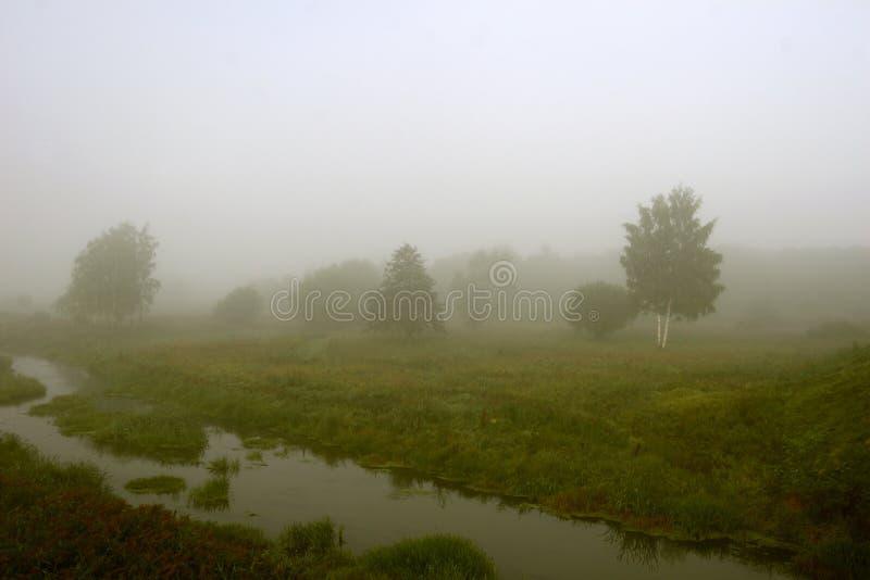 Es gibt einen starken Nebel stockbild