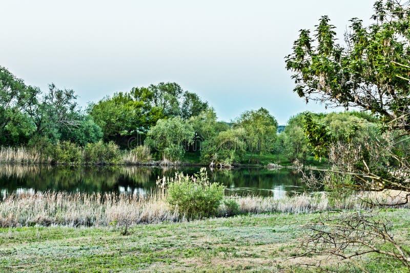 Es hat eine Ansicht des südlichen Wanzen-Flusses stockfotografie