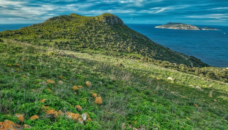 Es ist hier auf den Egadi-Inseln von Sizilien einfaches Romance stockbilder