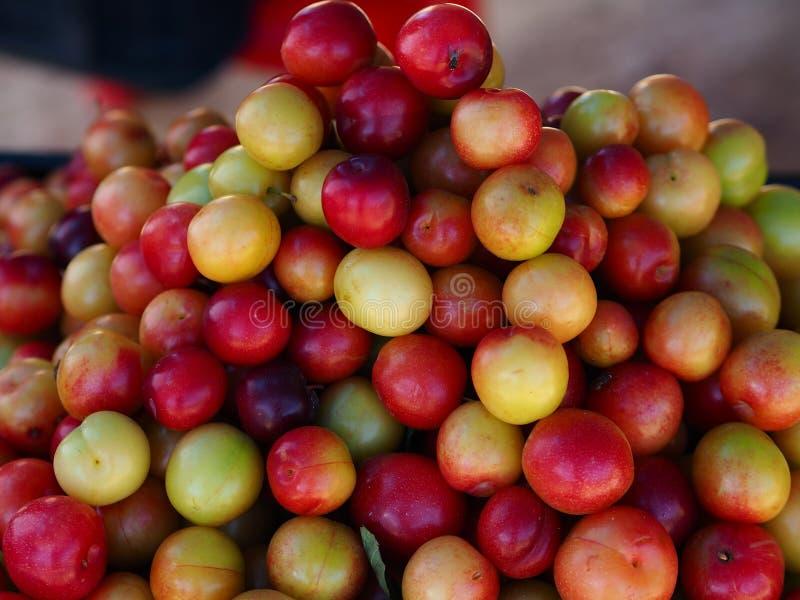 Es ist möglich, den Hintergrund zu benutzen frische organische rote Pflaumen verkauft im Farbmarkt lizenzfreies stockfoto