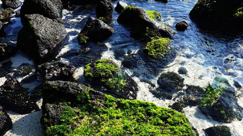 Es paisaje azul hermoso del mar de Udo de la isla de Jeju fotos de archivo libres de regalías