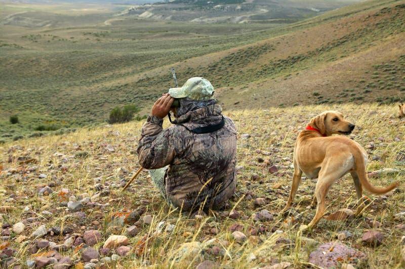 Esame del cacciatore e del cane del coyote per la preda dalla collina fotografie stock