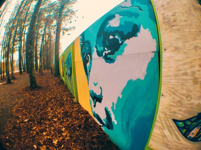 Esaminare il legno immagini stock