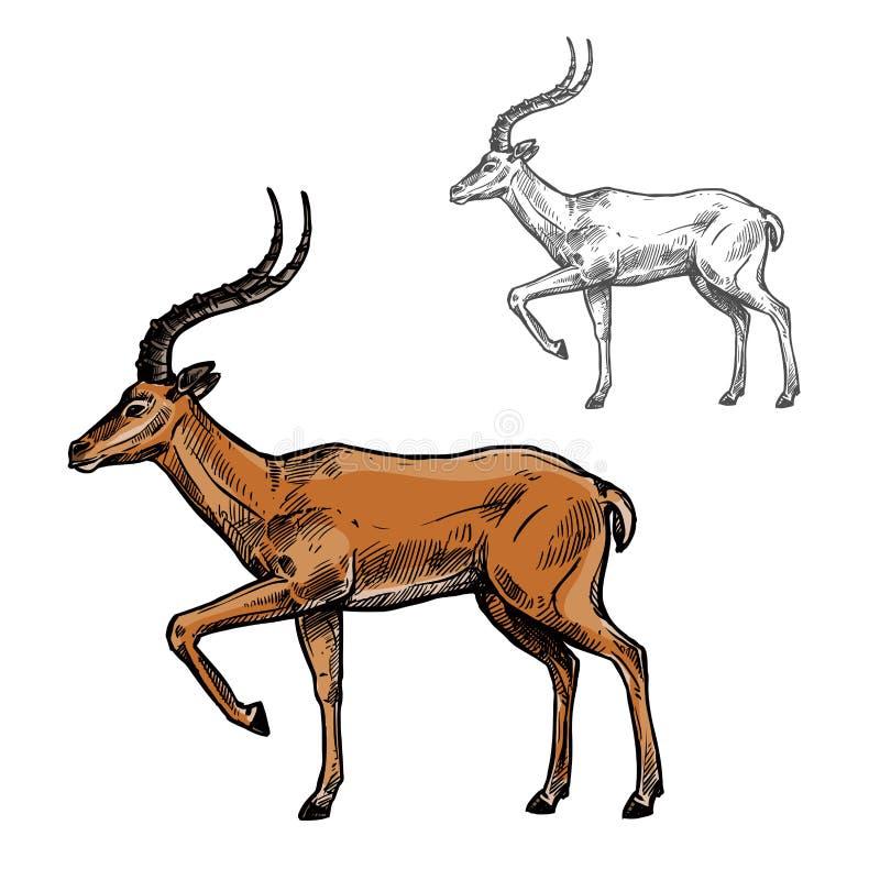 Esboço africano do animal da gazela ou do antílope do indiano ilustração do vetor