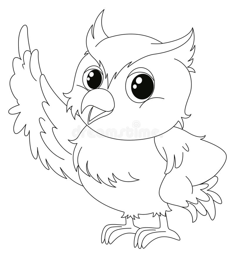 Esboço animal para a coruja bonito ilustração do vetor