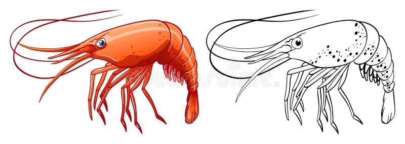 Esboço animal para o camarão ilustração do vetor