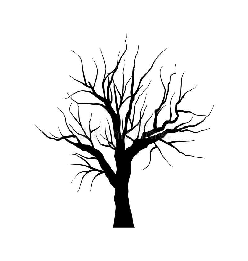 Esboço da árvore inoperante sem folhas, isolado no backgroun branco ilustração stock