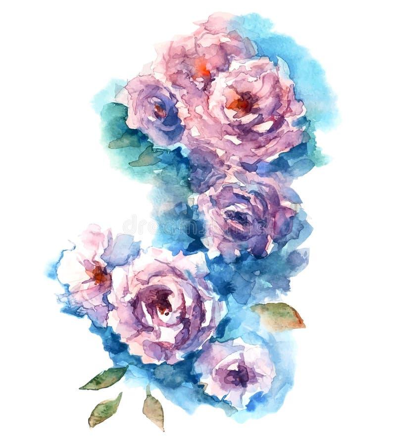 Esboço da aquarela das rosas ilustração do vetor