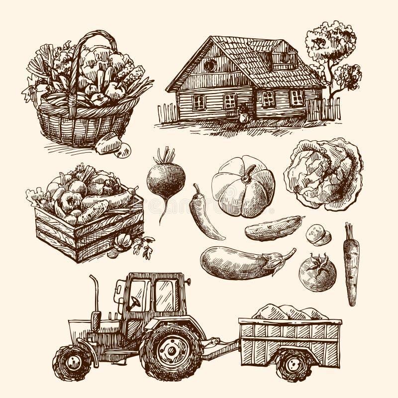 Esboço da exploração agrícola de Eco ilustração do vetor