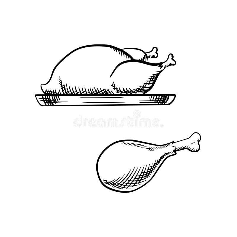 Esboço da galinha e do pé completos roasted ilustração stock