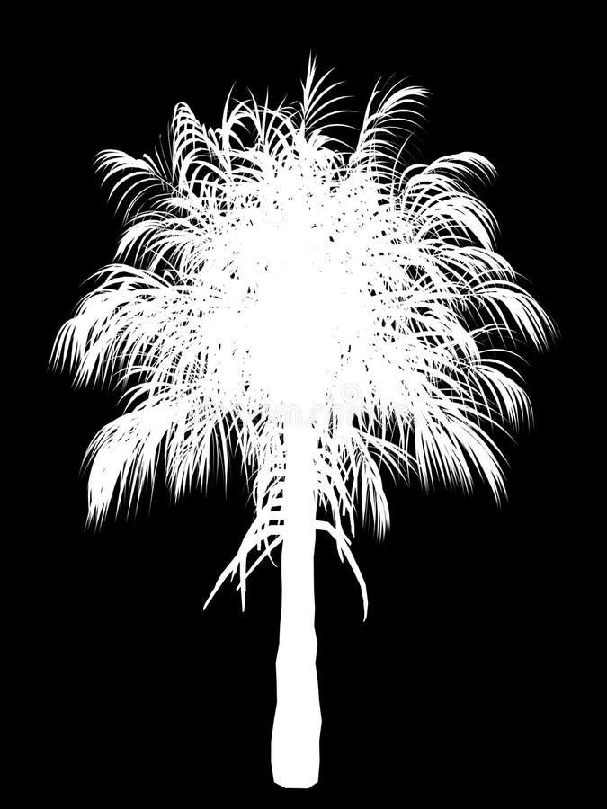 Esboço da palmeira ilustração stock