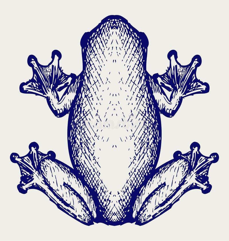Esboço da rã ilustração do vetor