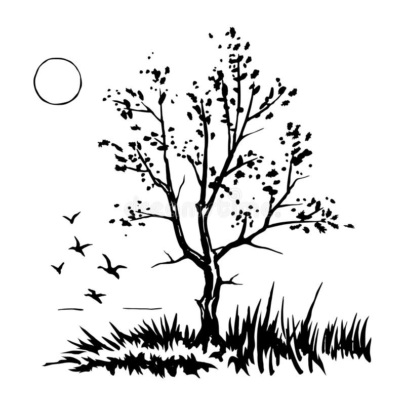 Esboço da silhueta da árvore ilustração stock