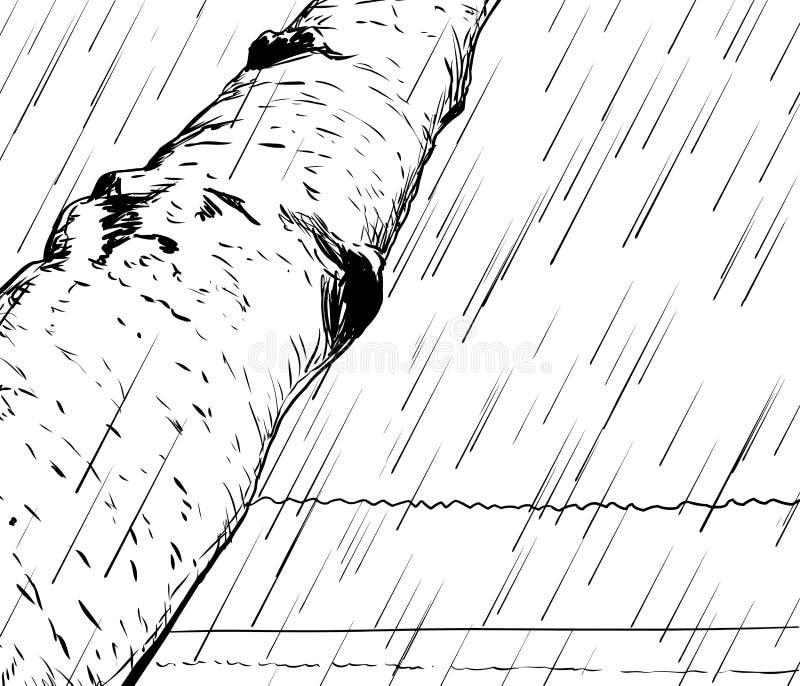 Esboço da tempestade da chuva no fundo da região selvagem ilustração stock