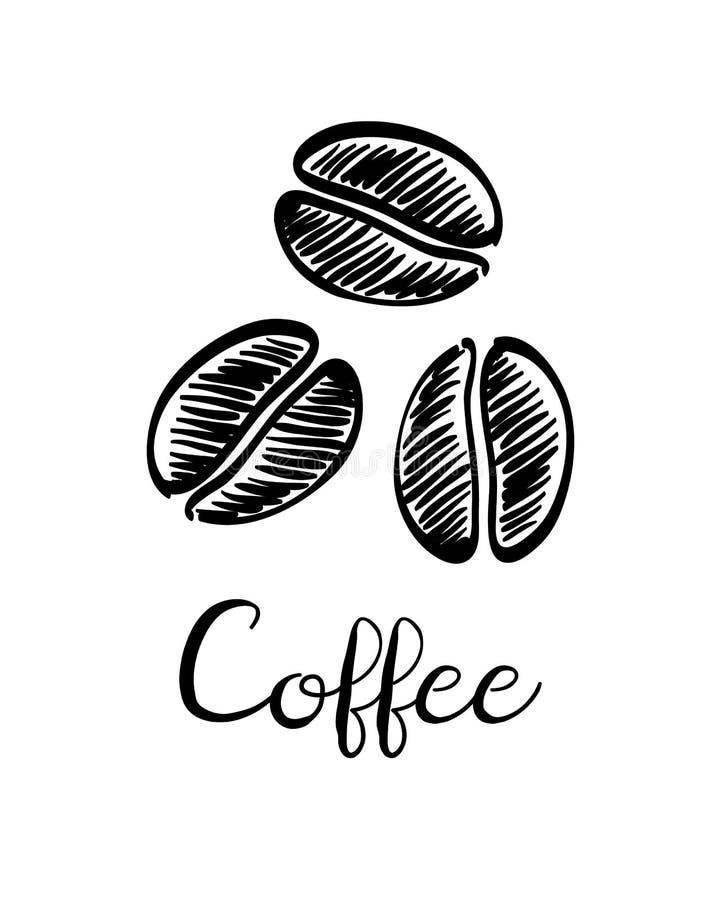 Esboço da tinta dos feijões de café ilustração royalty free