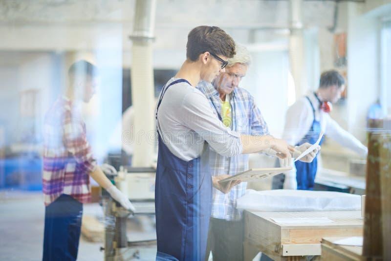 Esboço de exame concentrado do carpinteiro do trabalhador novo foto de stock royalty free