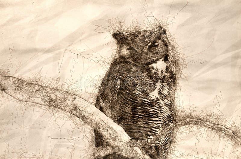 Esboço de grande Owl Perched Horned em um ramo em uma árvore ilustração royalty free