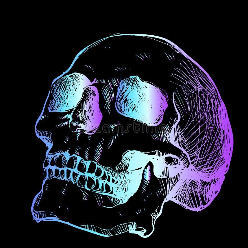 Esboço de néon brilhante de um crânio - uma ideia na moda para uma tatuagem Tom da violeta de turquesa ilustração do vetor