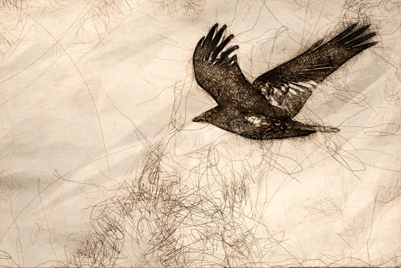 Esboço de Raven Flying Over preta comum o assoalho da garganta ilustração stock