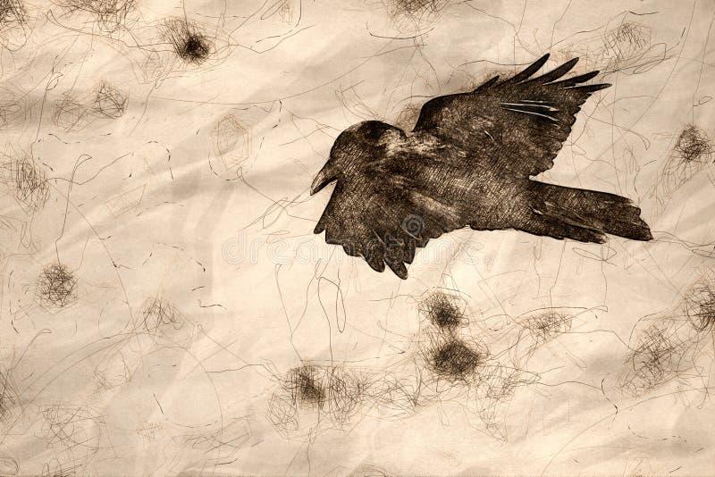 Esboço de Raven Flying Over preta comum o assoalho da garganta ilustração royalty free