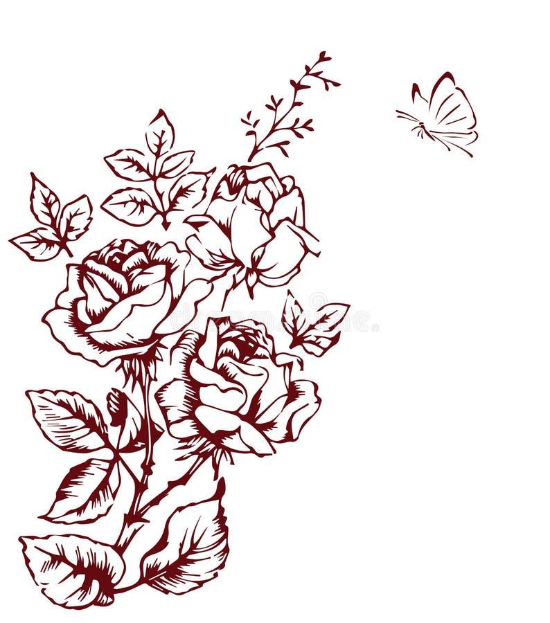 Esboço de Rosa ilustração do vetor