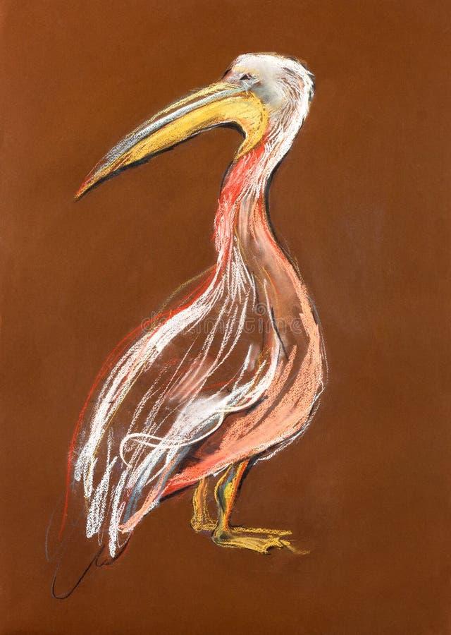 Esboço de um pelicano ilustração stock