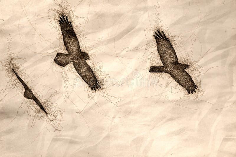 Esboço de um voo preto comum de três corvos em um céu azul ilustração stock