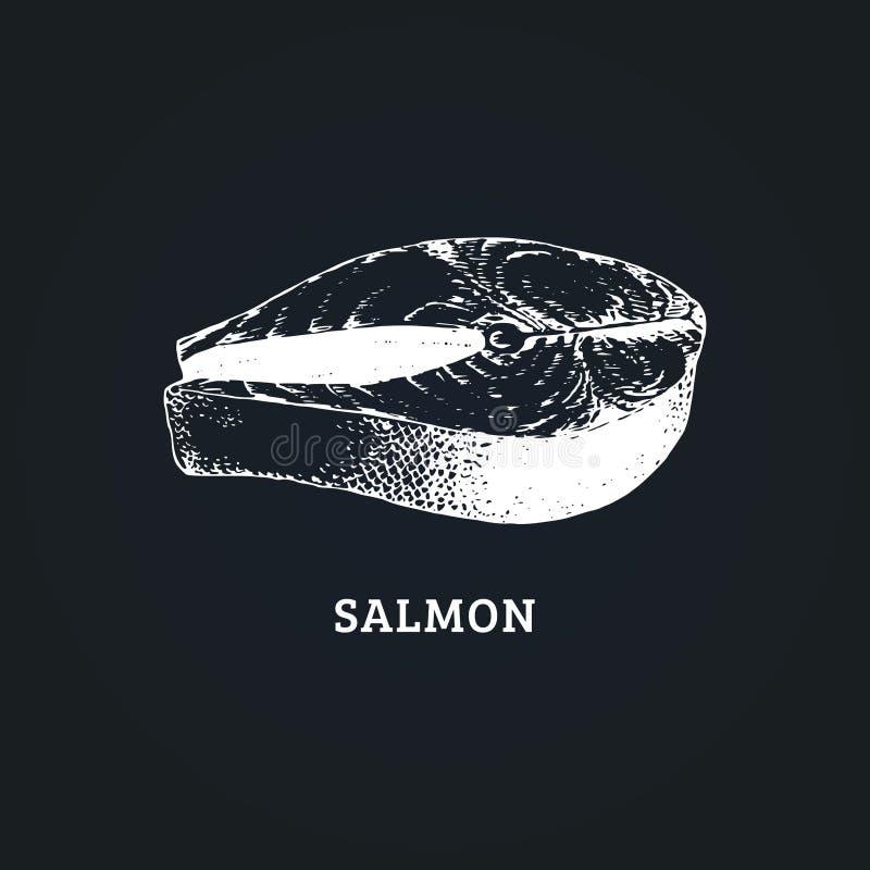 Esboço do bife salmon Ilustração do vetor no estilo gravado Imagem tirada do marisco saudável ilustração do vetor