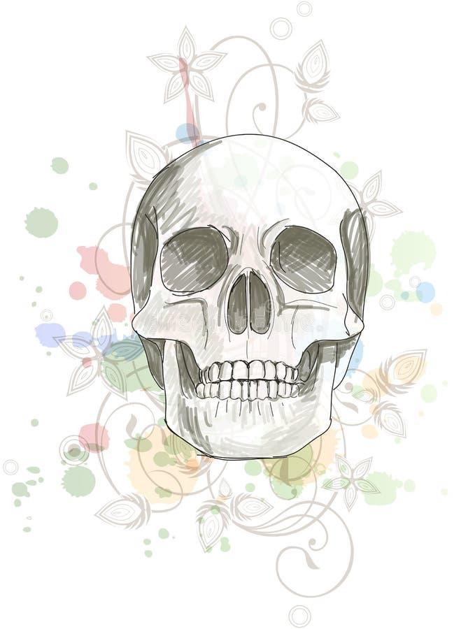 Esboço do crânio & ornamento floral da caligrafia ilustração do vetor