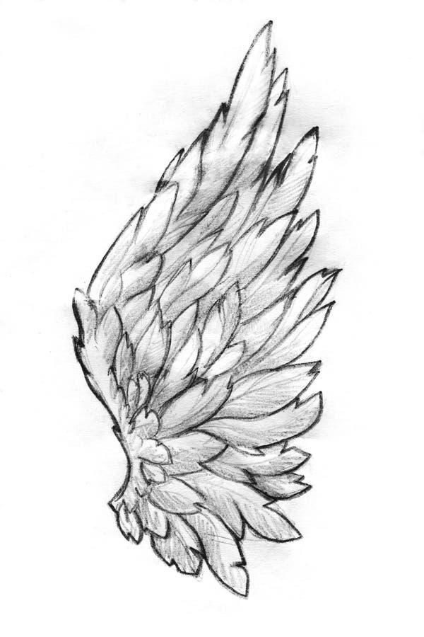 Esboço do lápis da asa ilustração royalty free