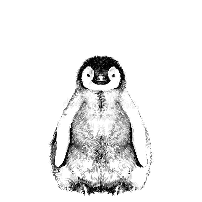 Esboço do pinguim do bebê ilustração stock