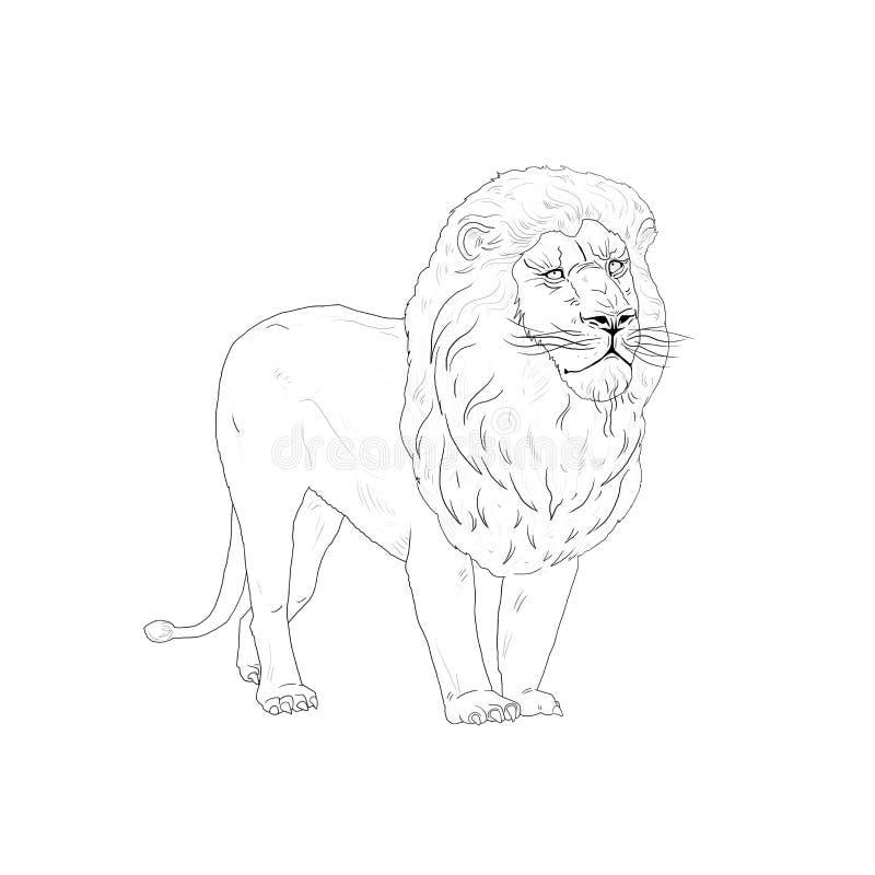 Esboço do rei do leão ilustração royalty free