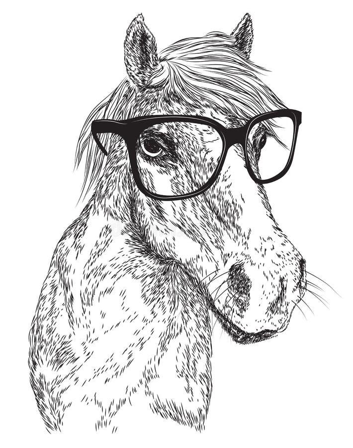Esboço do retrato do cavalo ilustração royalty free