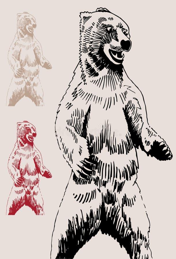Esboço do urso imagem de stock royalty free