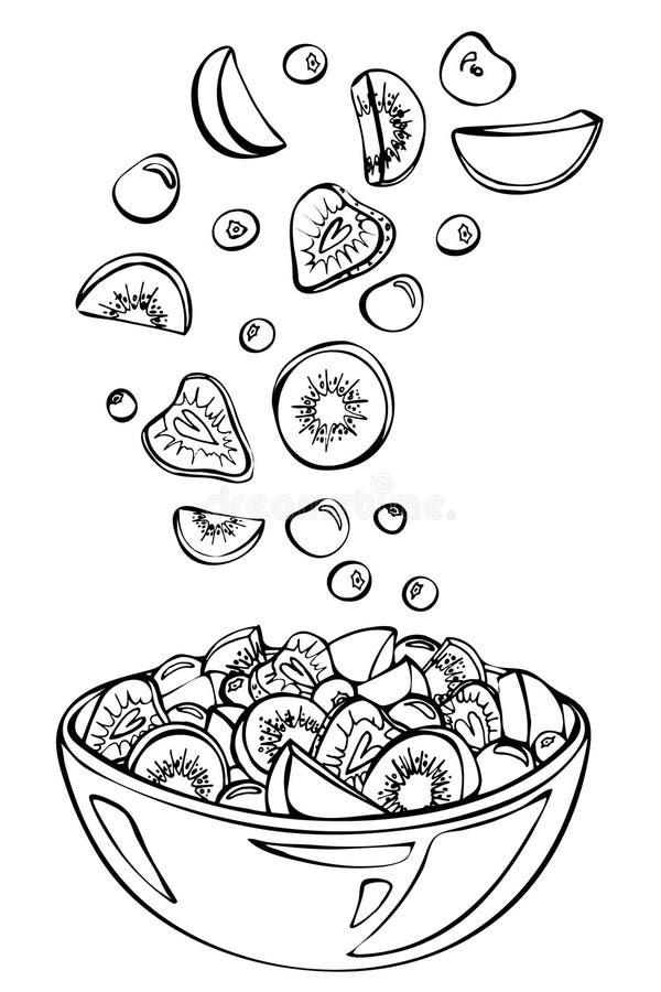 Esboço do vetor da salada de fruto do verão ilustração stock