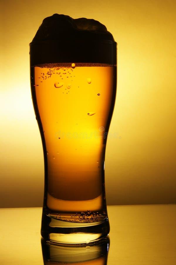 Esboço do vidro de cerveja fotografia de stock royalty free