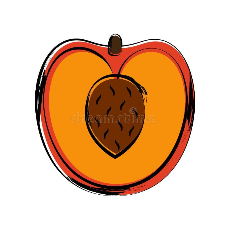 Esboço isolado de um pêssego cortado ilustração royalty free
