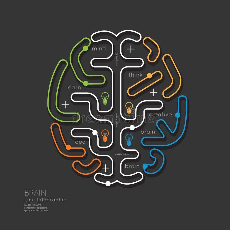 Esboço linear liso Brain Concept da educação de Infographic Vetor ilustração stock